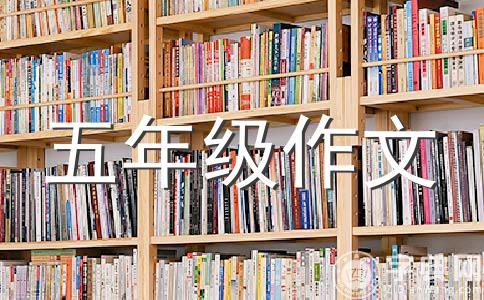 【必备】新学期计划作文(精选六篇)