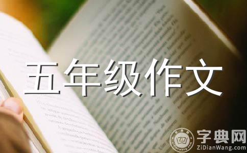 【精选】随笔作文集锦10篇