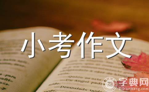 给刘思影同学的一封信