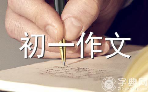 【必备】目光800字作文集锦6篇