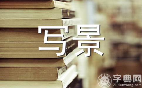 【实用】冬日暖阳400字作文集锦七篇