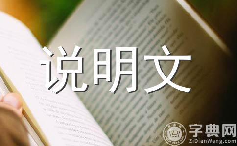 【精华】小制作200字作文(精选十五篇)