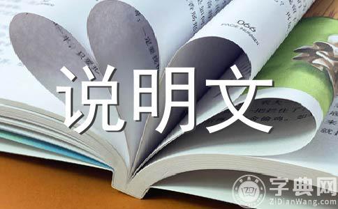 【推荐】小制作作文7篇