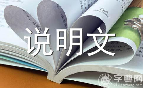 小制作作文集锦8篇