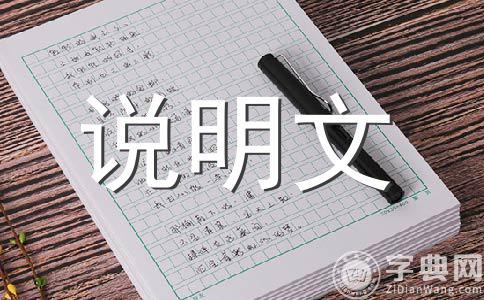 【必备】小制作200字作文集锦十一篇