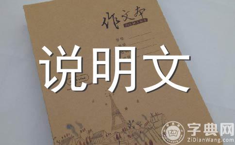 【必备】小制作400字作文