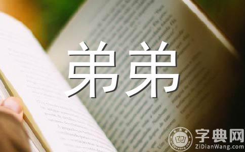 ★我的弟弟500字作文汇编七篇