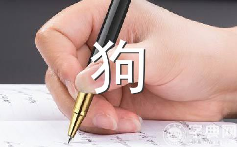 【推荐】小动物作文集锦5篇