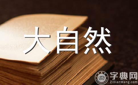 【精】倾听作文集锦10篇