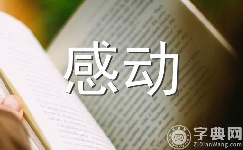★感动800字作文合集十篇