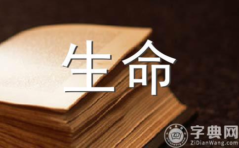【实用】生命400字作文汇编15篇