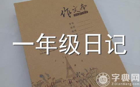 美女樱花的种植日记(四)