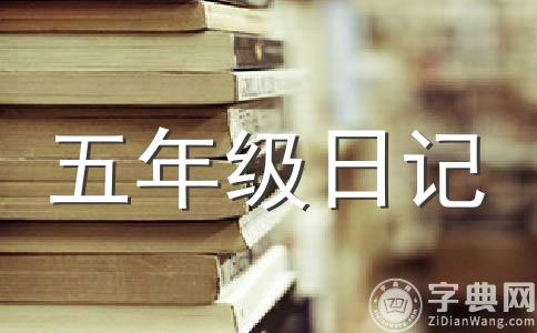 【必备】数学日记作文