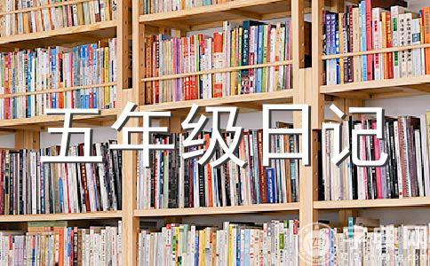 【热门】数学日记作文汇总7篇